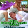 #250: Inbred Branded Not Pregnant Donkeys