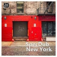 SpecDub - New York BDTom Rmx / Plastic City / Snippet