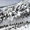 Winterdans '15