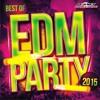 House Music New Mega Remix Mix Prodakšn ( Official EDM)