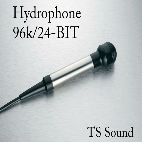 Hydrophone Library Demo