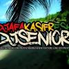 DJ AFAKASI FRESH & DJ SENIOR - AKON FT MATOMA VS SEAN KINGSTON - STICK AROUND RMX 2015
