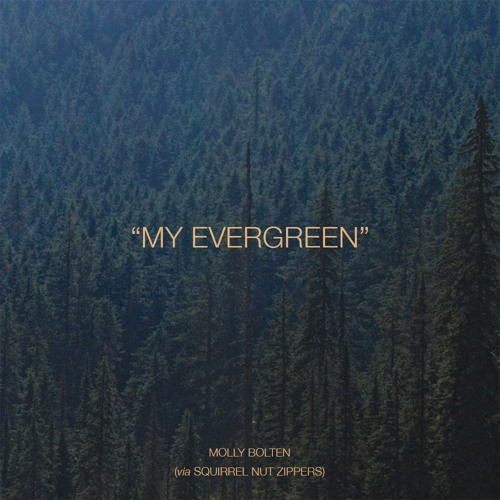 My Evergreen (Squirrel Nut Zippers Cover)