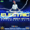 DJ Sensilover - Electric (Reggae, Dancehall Mix 2015 Preview)
