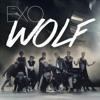 Exo Wolf Remix