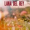 Swan Song - Lana del Rey (cover)