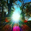 Solstice D'hivers Mono Mix 2015 mp3