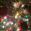 Yellin At The Xmas Tree Mix 1