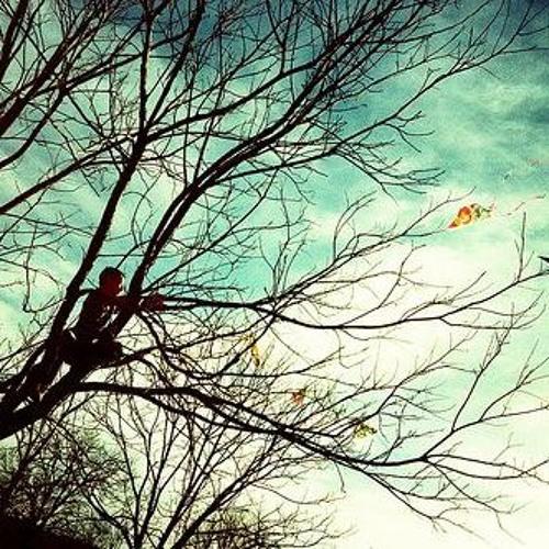 Blue Paper Kites (LIVE)