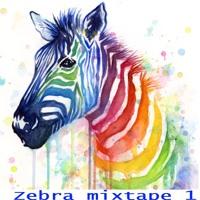 DJStrickx and eSQuw Zebra Mixtape 1