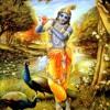 Mangal Aarti Kritan Other Devotees 09 04 2012 Aarti Nitai1205