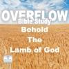 Overflow Bible Study: Behold The Lamb Of God - Bishop David Maldonado