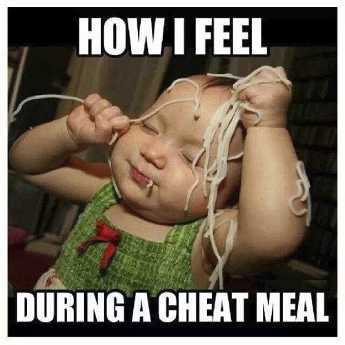 Feed The Machine Episode #21  - Cheat Meals, Quality vs Performance...and the VERY last DN Podcast?!