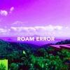 Roam Error