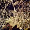 冬の星座を見に行こう/Minami Otsuka