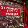 Strawberry Fields Forever (The Beatles Cover)