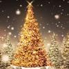 Christmas Song Medley - Grace Christina's