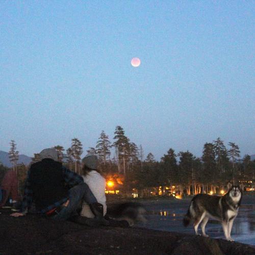 Episode 7 ~ Blood Moon eclipse gathering, DJ Rennie Foster interview, zine reading
