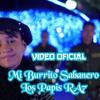 Los Papis RA7 & Yanet Guadalupe - Mi Burrito Sabanero (Irvin Geovany Moombah Remix)