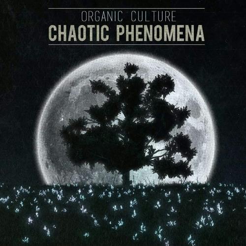 Chaotic Phenomena