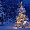 Merry Crismas (1)