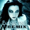 Evanescence - Everybody's Fool (The Enigma TNG Remix)