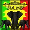 TrIbal Sound (Am Instrumentale) mp3