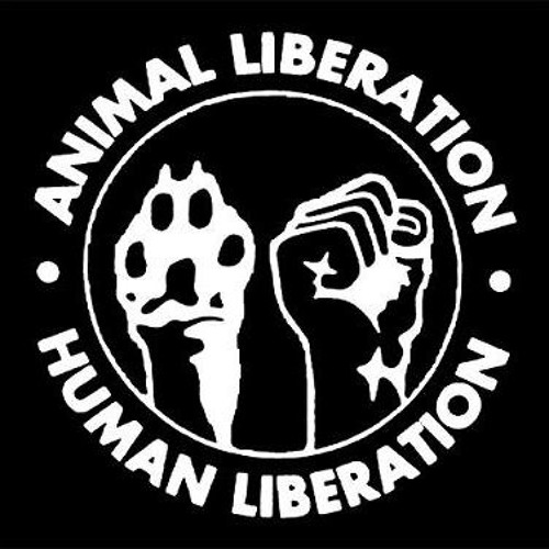 Linking Human Rights, Animal Rights and the Environment - Panel Discussion