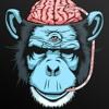 Download Brain Distortion Mp3