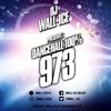 DANCEHALL 100% 973 - DJ WALL-ICE