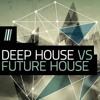 Deep/Future House Mix vol.2