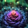 WaveDream 432Hz healing meditation music