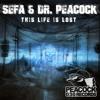 Dr. Peacock & Sefa Ft. MC Lenny - Trip To Turkey