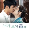 Shin Young Jae - I Will Show You (cover by disaegalita)