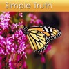 Relaxation Music of Simple Truth - 30 Minute Recording - Only $1.95