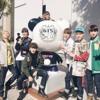 BTS Version