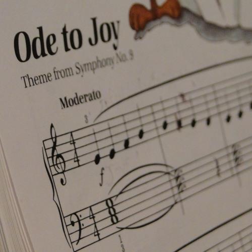 Viduni - Ode To Joy by Beethoven and Irish Washerwoman
