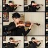 Skyrim Violin Cover (2011)
