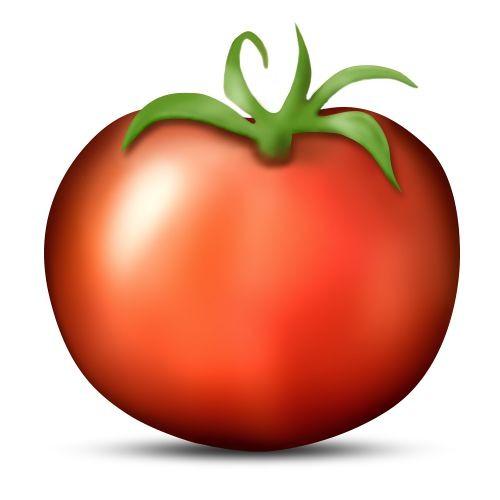 Tomato Land 2016