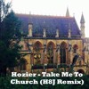 Hozier - Take Me To Church (H8J Remix)