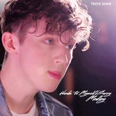 Troye Sivan - Hands To Myself/Sorry