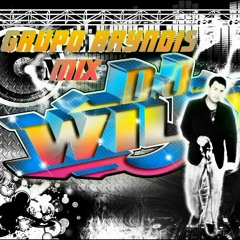BRYNDIS MIX DJ WILLY.mp3