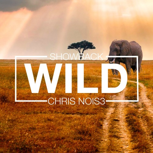 Showback X Chris Nois3 - Wild (Original Mix)