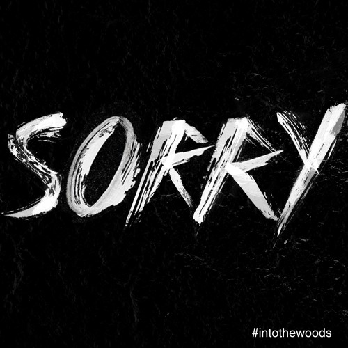 Justin Bieber - Sorry (Nasa Woods Cover)