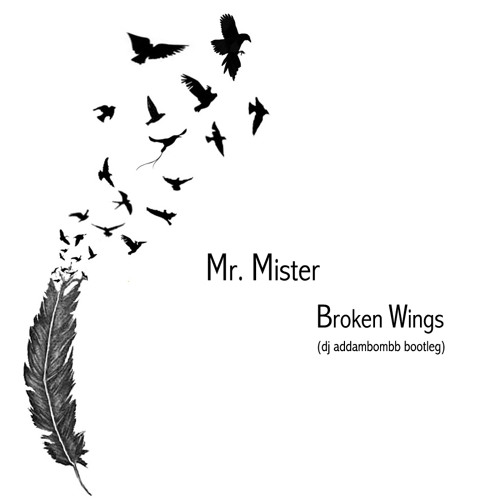 Mr Mister - Broken Wings (dj addambombb bootleg)