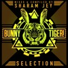 Sharam Jey & Frey - Yo Baby! (Preview)// BTLP007 [OUT NOW]