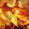 Lets Go -Calvin Harris -Phoenix Rises Remix