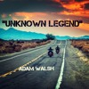'Unknown Legend' (Neil Young) Cover.