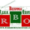 January 6th - Radio Bilisummaa Oromoo: Message from ODF Pr. Leenco Lata