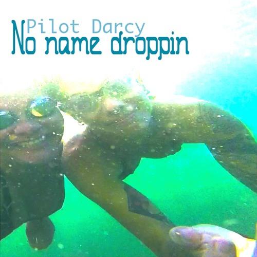 No Name Droppin